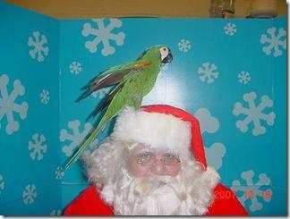 Santa Perch