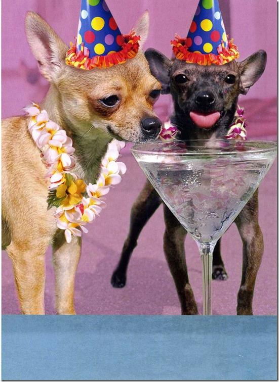 B-Day Card - Chi Martinis