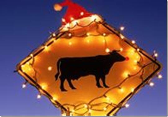 Texas Merry Christmas Bill