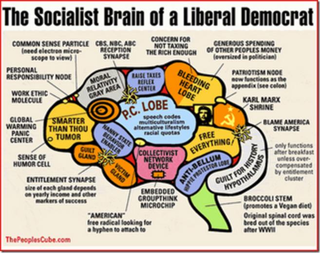 Socialist_Brain_xlarge