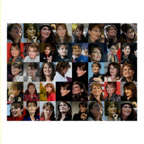 Palin Framed Photo Collage