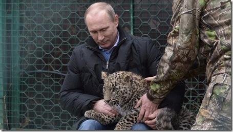 Putin and Leopard