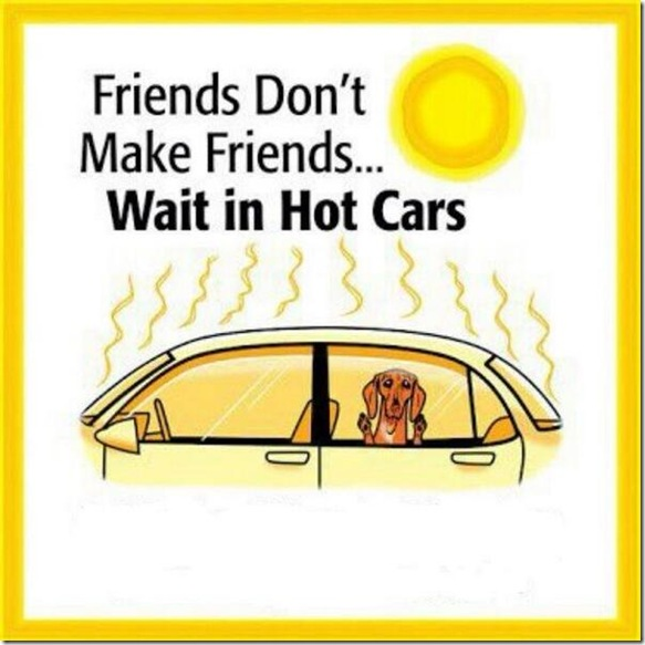 Friends Do Not Make Friends Wait in Hot Cars